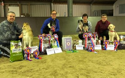 Nederlands Kampioen winter competitie Agility